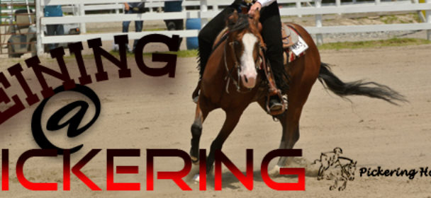 Reining At Pickering