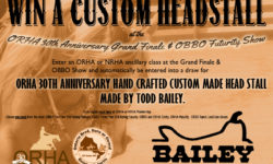 Win a Custom Bailey's Headstall
